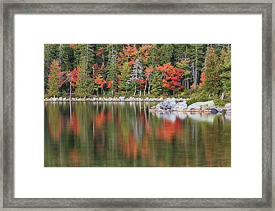 Reflections Framed Print by Mike Lang