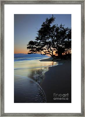 Reflections Of One Framed Print by Mike  Dawson