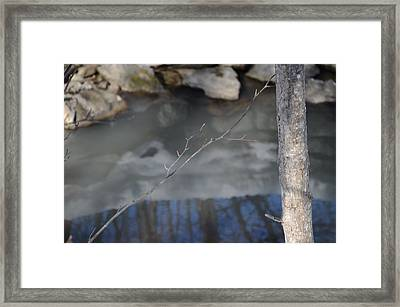 Reflections Framed Print by Vinci Photo