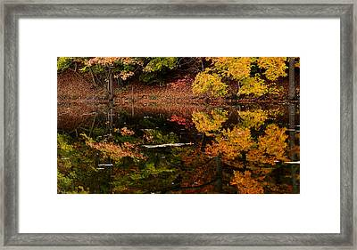 Reflective Colors Framed Print by Lourry Legarde