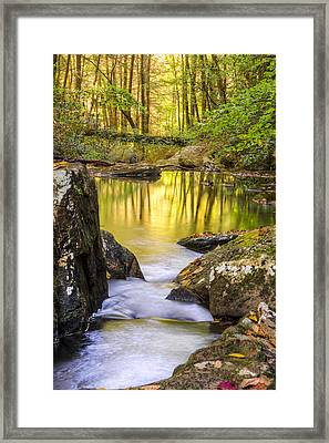 Reflective Pools Framed Print by Debra and Dave Vanderlaan