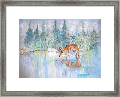 Refreshed  Framed Print by Julia and David Bowman