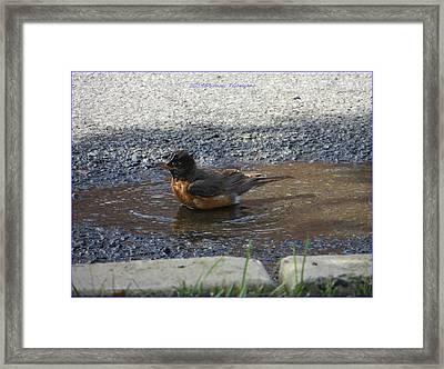 Refreshing Bath Framed Print by Sonali Gangane