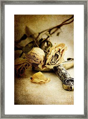 Regrets Framed Print by Stephanie Frey