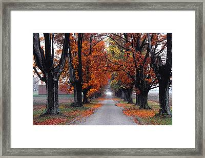 Reid's Orchard Drive Framed Print by Wendell Thompson