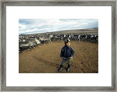 Reindeer Herder, Russia Framed Print by Science Photo Library