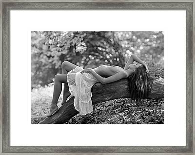 Relaxation Framed Print by Roman Lipinski ?