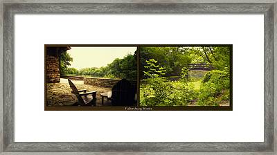 Relaxing By The River Bridge Fullersburg Woods 2 Panel Framed Print by Thomas Woolworth