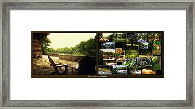 Relaxing By The River Collage Fullersburg Woods 2 Panel Framed Print by Thomas Woolworth