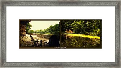 Relaxing By The River Looking For Breakfast Fullersburg Woods 2 Panel Framed Print by Thomas Woolworth
