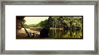 Relaxing By The River Salt Creek In August Fullersburg Woods 2 Panel Framed Print by Thomas Woolworth