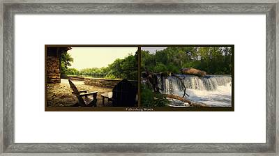 Relaxing By The River Teeter Totter Log Fullersburg Woods 2 Panel Framed Print by Thomas Woolworth