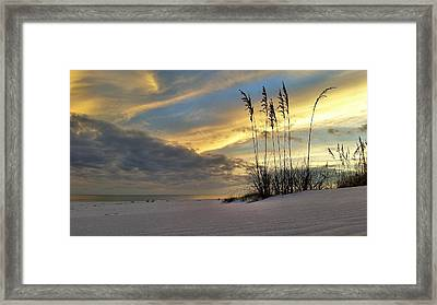 Relaxing On The Emerald Coast Framed Print by JC Findley