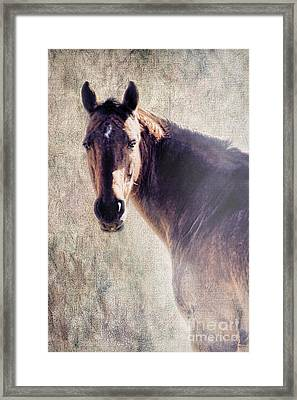 Reliability Framed Print by Betty LaRue