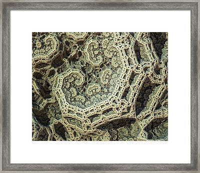 Relic Framed Print by Kevin Trow