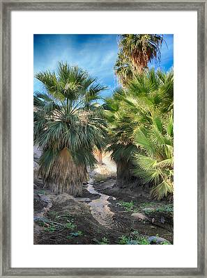Relief Framed Print by Laurie Search