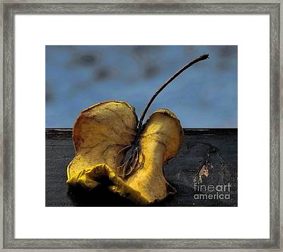 What's Left Over... Framed Print by Marija Djedovic