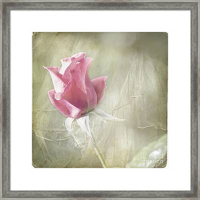 Reminiscing Framed Print by Linda Lees