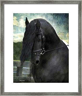 Remme Framed Print by Fran J Scott