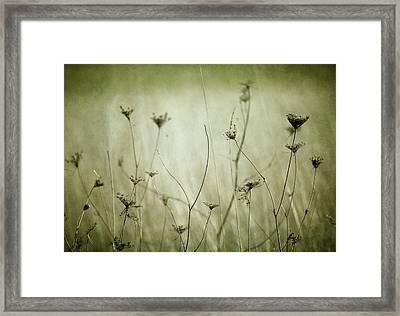 Remnants Framed Print by Rebecca Cozart