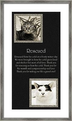 Rescued Framed Print by Andee Design