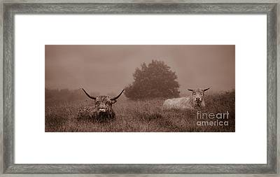 Resting Beasts Framed Print by Linsey Williams