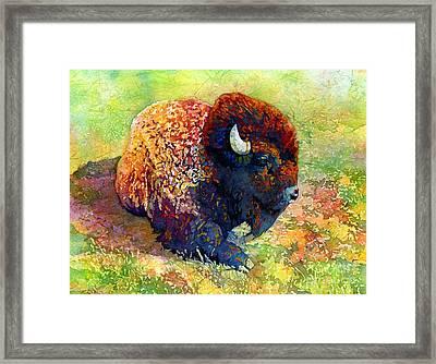 Resting Bison Framed Print by Hailey E Herrera