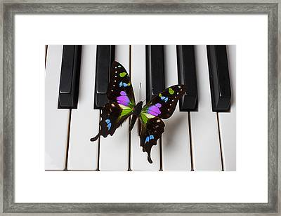 Resting On The Piano Framed Print by Garry Gay
