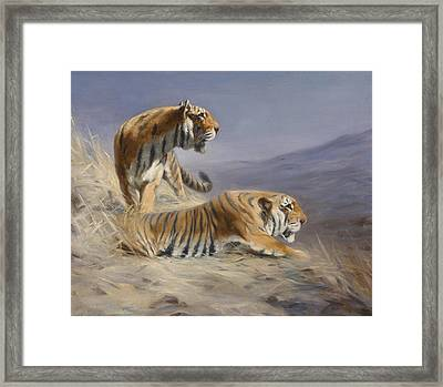 Resting Tigers Framed Print by Lilian Cheviot