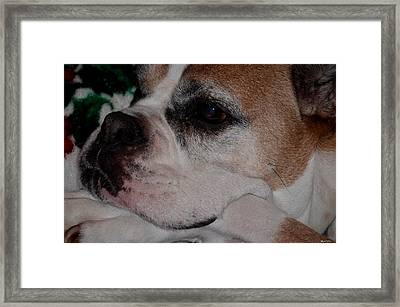 Retired Framed Print by Maria Urso