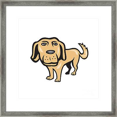 Retriever Dog Big Head Isolated Cartoon Framed Print by Aloysius Patrimonio