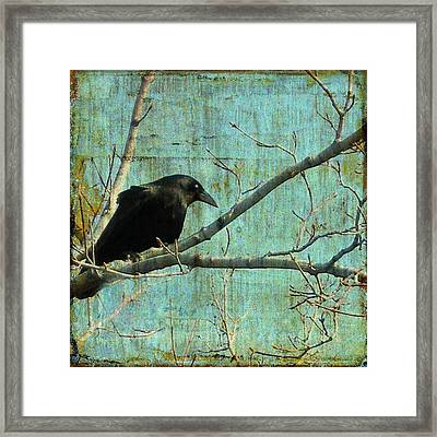 Retro Blue - Crow Framed Print by Gothicolors Donna Snyder