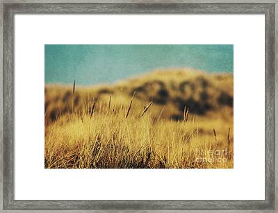 Retro Dunes Framed Print by Angela Doelling AD DESIGN Photo and PhotoArt