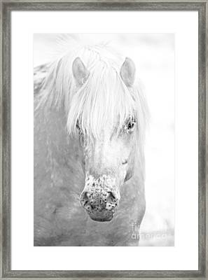 Revelation... Framed Print by Nina Stavlund