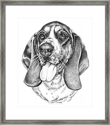 Rhino Framed Print by Catherine Garneau