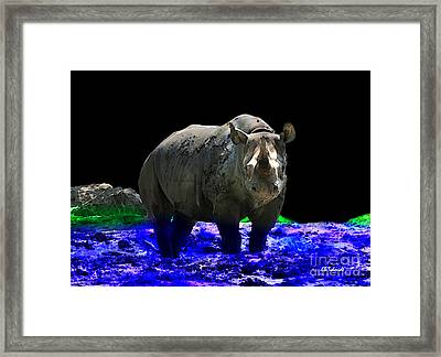Rhino Framed Print by E B Schmidt