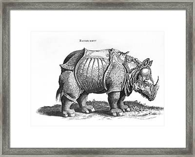Rhinoceros No 76 From Historia Animalium By Conrad Gesner  Framed Print by Albrecht Durer