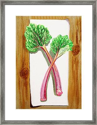 Rhubarb Tasty Botanical Study Framed Print by Irina Sztukowski
