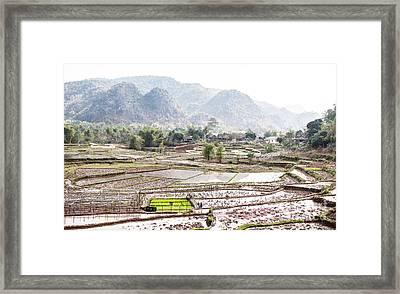 Rice Fields And Village In Vietnam Framed Print by Paul Frederiksen
