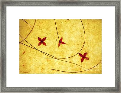 Rice Paper Wildflower Yellow Framed Print by Charline Xia