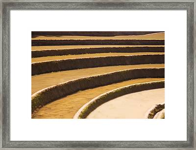 Rice Terraces Of Yuanyang 3 Framed Print by Lanjee Chee