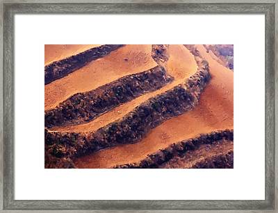 Rice Terraces Of Yuanyang 5 Framed Print by Lanjee Chee