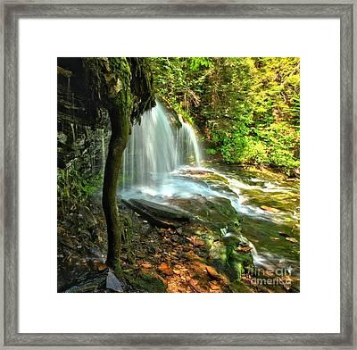 Ricketts Glen Mohawk Falls Framed Print by Adam Jewell