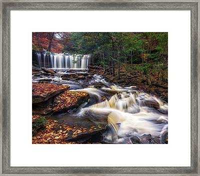 Ricketts Glen Oneida Falls Framed Print by Mark Papke