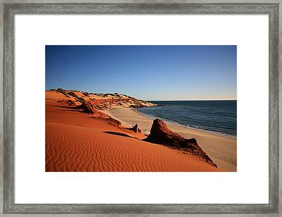 Riddle Of The Spinx Framed Print by Shari Mattox