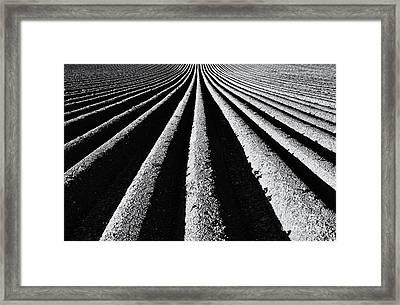 Ridge And Furrow Framed Print by Tim Gainey