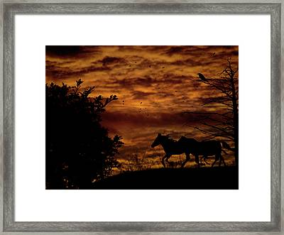 Riding Into The Night Framed Print by Diane Schuster