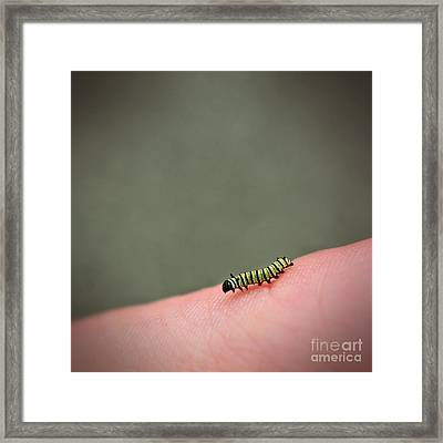 Riding On Human Scape Framed Print by Aimelle