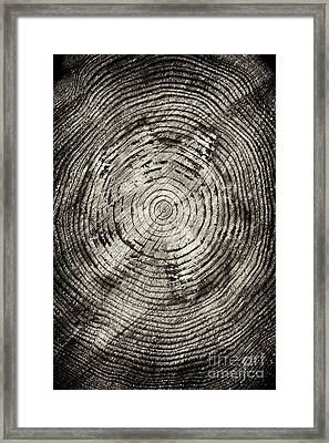 Rings Of Time  Framed Print by Tim Gainey