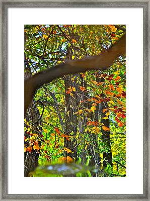 Ripples Tell The Story Framed Print by Frozen in Time Fine Art Photography